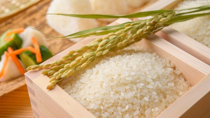 đại lý gạo Biên Hòa